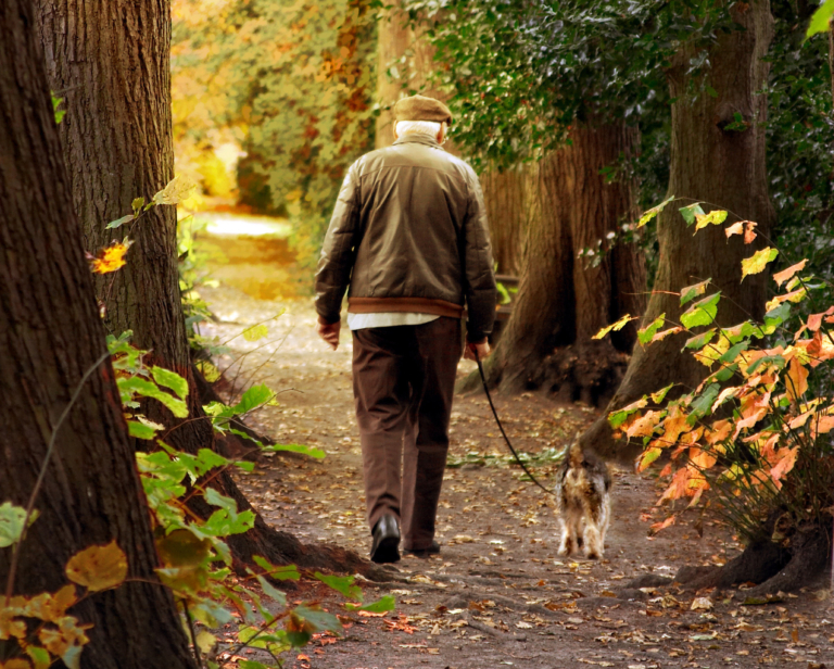 Elderly man and a dog